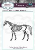 CE Rubber Stamp by Andy Skinner - Skeleton of a Horse- CEASRS010